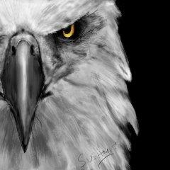 G_Eagle